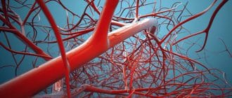 Как почистить кровь в домашних условиях народными средствами