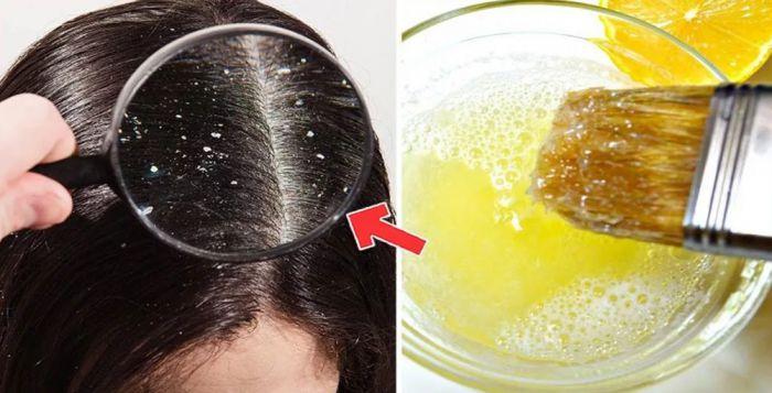 как наносить маску с яйцом на волосы