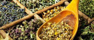травы для печени