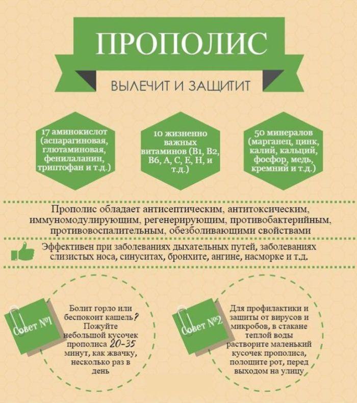 Лечебные свойства и применение настойки прополиса
